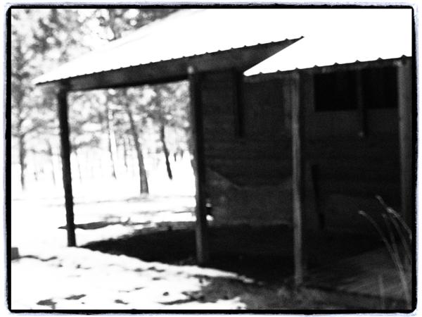 Barn.blog