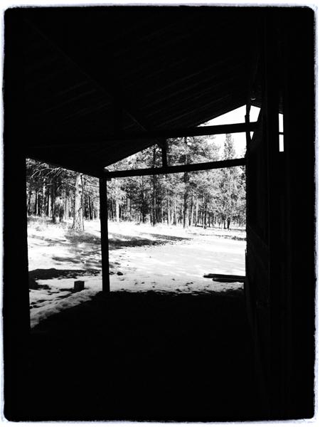 Viewfrombarn.blog