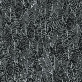S.leavesebony